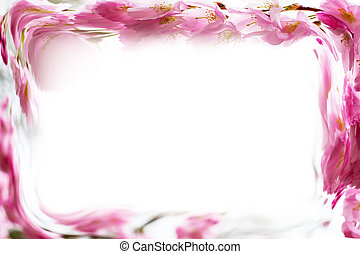 Photo frame background with Beautiful pink cherry blossom, Sakura flowers