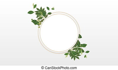 Photo frame for copy space with decorative plant - Circle...