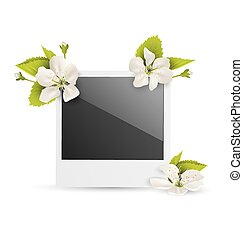 Photo frame with white cherry flowers isolated on white