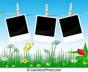 Photo frames on the summer  background