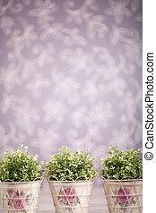 Photo-illustartion of domestic plants