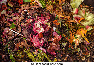 food vegetables waste