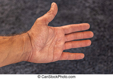 photo, main humaine