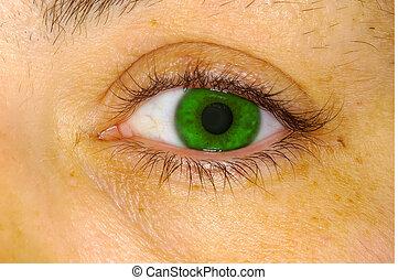 Photo of a Green Eye