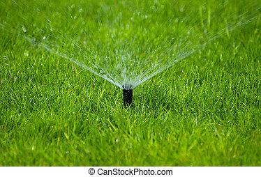 Lawn Sprinkler - Photo of a Lawn Sprinkler