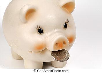 Photo of a Piggy Bank and Quarter