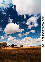 a scenic nature farmland landscape with clouds