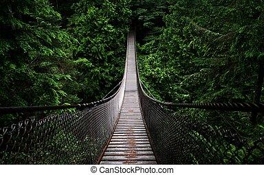 suspension bridge - photo of an old suspension bridge in a...