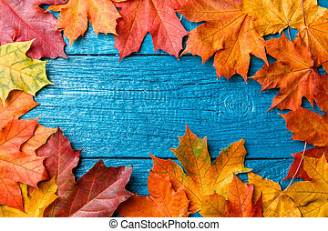 Photo of autumn leaves on blue table