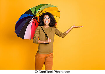 Photo of cheerful brown positive cute nice charming pretty sweet girl holding object with hands while catching raindrops wearing pants trousers orange isolated over yellow vivid color background