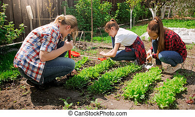 Photo of family weeding and breaking up soil at backyard garden