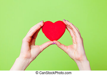 photo of female hands holding heart shaped toy on the wonderful green background