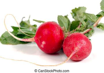 Photo of Fresh Radishes