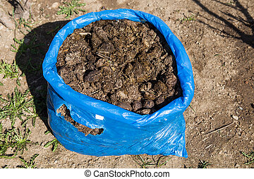 Photo of horse manure on garden