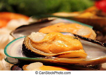 Photo of Mussel - A Photo of green Mussel for restaurant