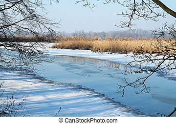 photo of partly frozen pond with sear reed framed with bare branches in Poodri, Czech Republic in winter