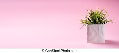 Plant In Pot On Pink Background