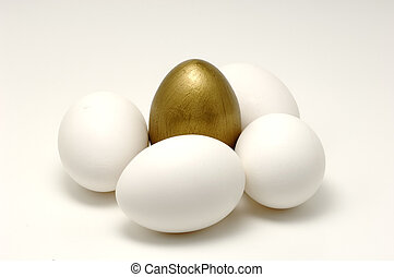 Gold Egg - Photo of Several Eggs and a Gold Egg
