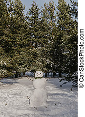 photo of snowman in the forest.
