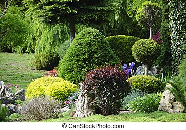 Photo of the Gardening and Landscaping With Decorative Trees and Plants