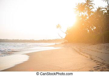 Sunset on beautiful beach
