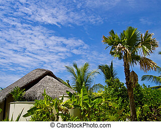 maldivian bungalow