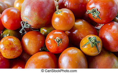 Photo of tomatoes on white background.