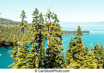 Trees in front of Emerald Bay and Lake Tahoe
