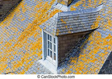 photo of window on roof