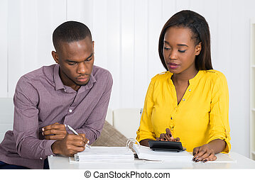 Couple Calculating Bill