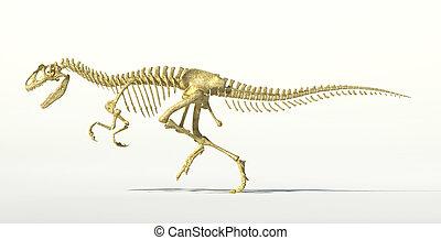 photo-realistic, 恐龍, allosaurus, skeleton.