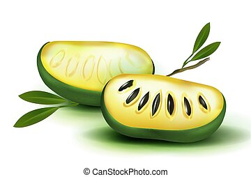 Photo Realistic 3d vector pulp and seeds with leaves isolated on white background papaya papaw fruit asimina triloba , custard apple, or pawpaw plant Carica papaya, genus Carica