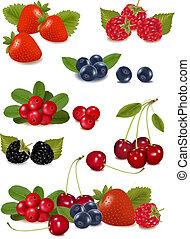 photo-realistic, groupe, grand, illustration, berries., vecteur, frais