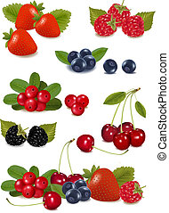 photo-realistic, gruppo, grande, illustrazione, berries., vettore, fresco