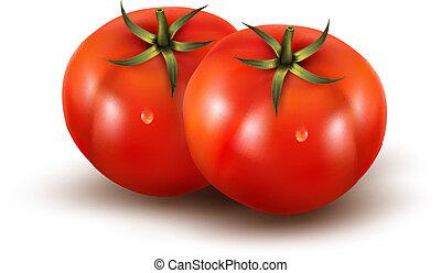 photo-realistic, illustration., vrijstaand, achtergrond., vector, witte , tomaten