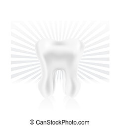 photo-realistic tooth illustration