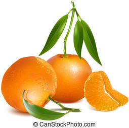 Fresh tangerine fruits with green leaves - Photo-realistic...