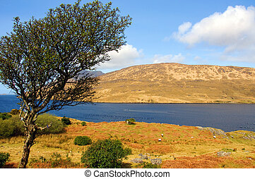 scenic landscape of connemara in ireland
