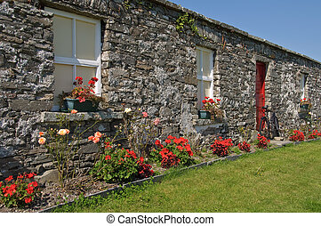 scenic rural irish cottage with bicycle and roses - photo...