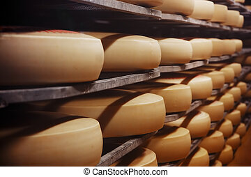 photo, usine, fromage