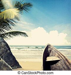 photobeach-31 - vintage palm background