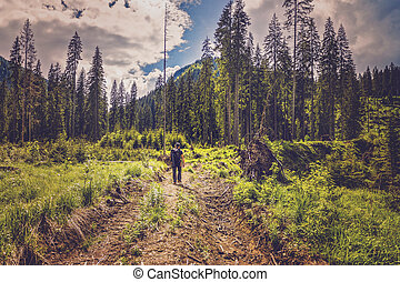 Photographer going on the mountain looking to find a place for shooting