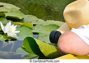 Photographer in the nature photographing white lily.