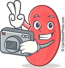 Photographer kidney mascot cartoon style