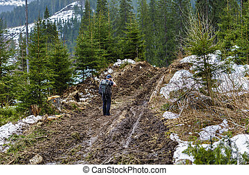 photographer on a dirt road in a pine forest in the mountains