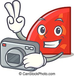 Photographer quadrant mascot cartoon style vector...