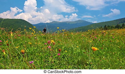 photographer on a background of mountain scenery