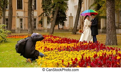 Photographer taking pictures couple of newlyweds with...
