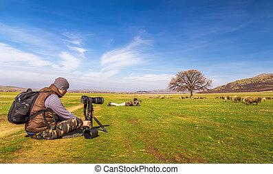 Photographers taking landscape picture