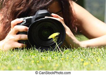photographie, fleur, prendre, haut, joli, fin, girl, herbe